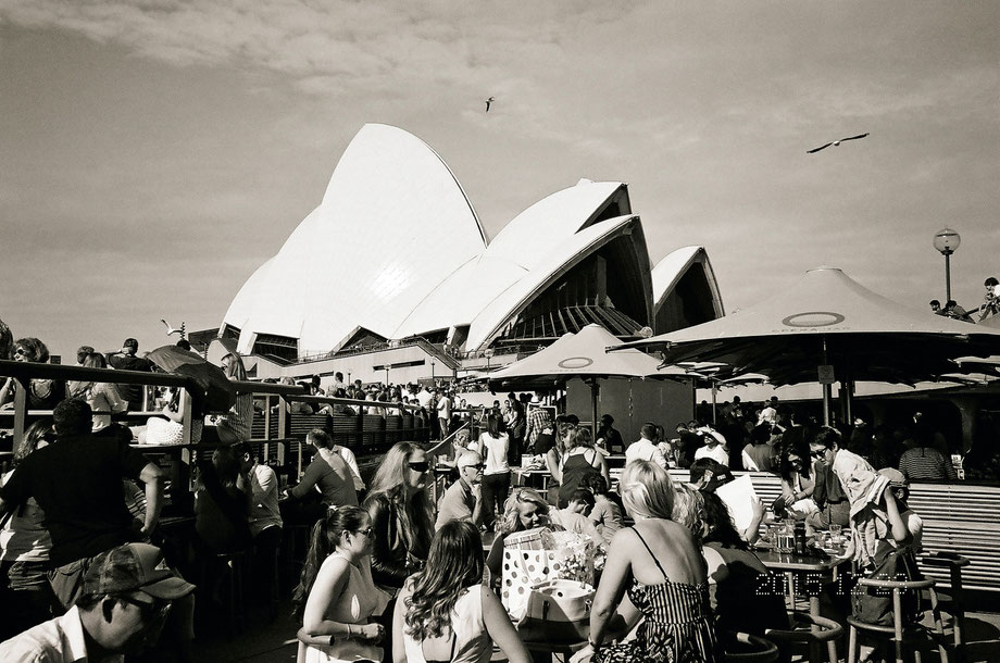 Opera House II (with Leica C1 and Ilford 400 XP2 Super Film)