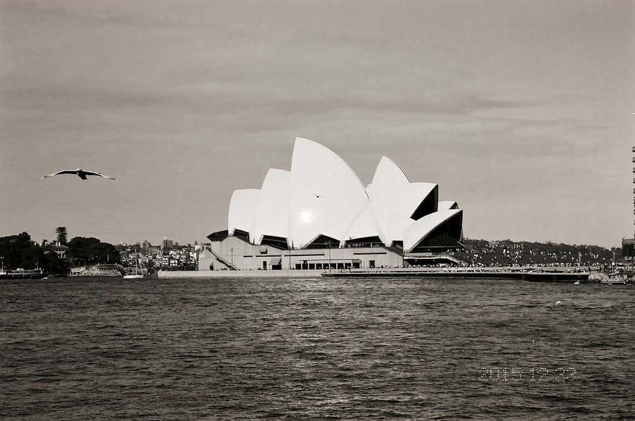 A postcard from Sydney (with Leica C1 and Ilford 400 XP2 Super Film)