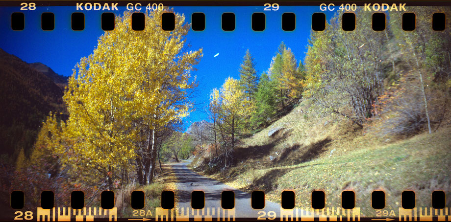 AUTUMN IN THE ALPS 2014 II (with Lomography Sprocket Rocket Camera)
