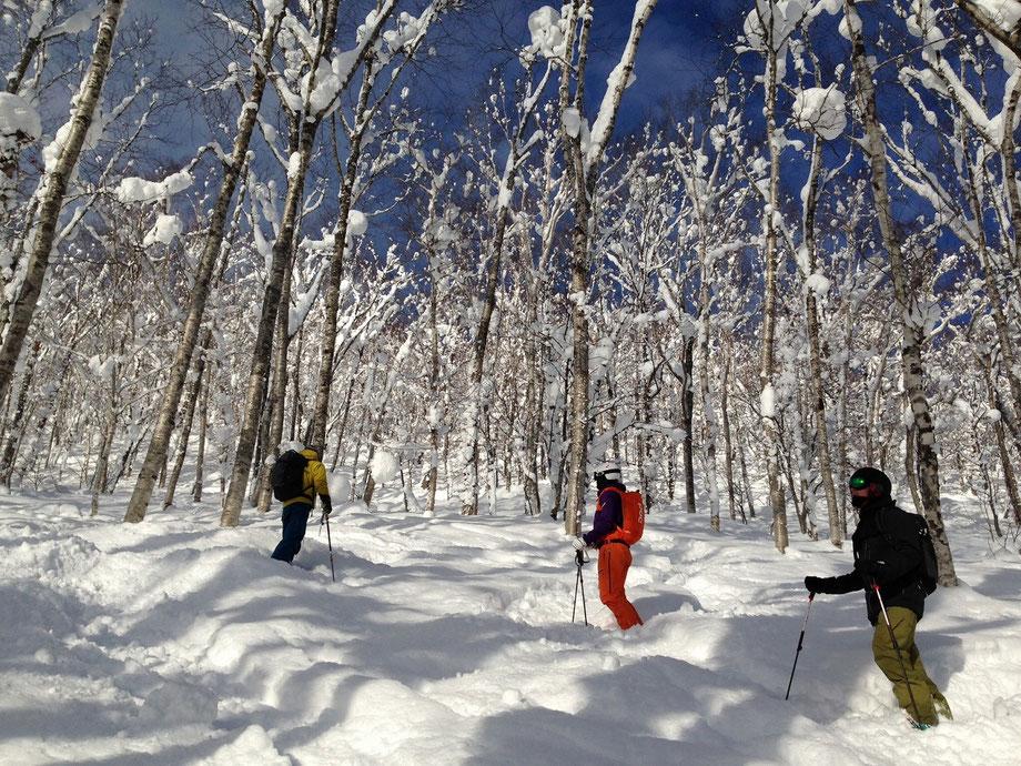 Hokkaido-powder-skiing-resort