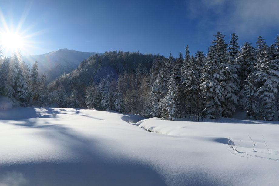 tokachidake-hokkaido-ski-backcountry
