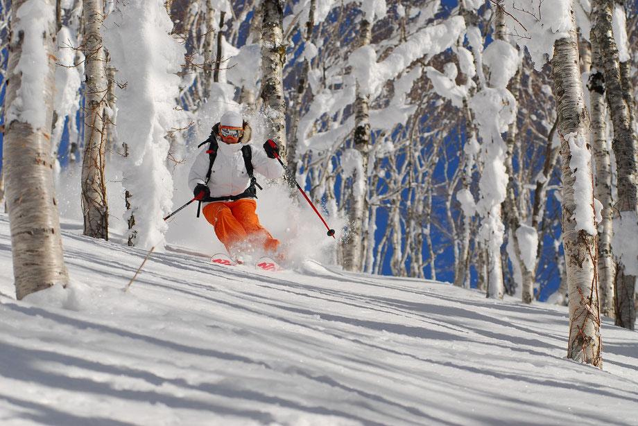 Hokkaido-resort-powder-skiing