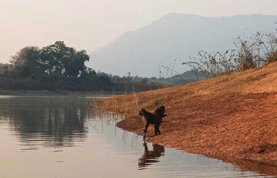 Nam Ngum Reservoir