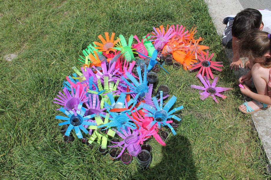 opération recyclage pour planter des fleurs sauvages.