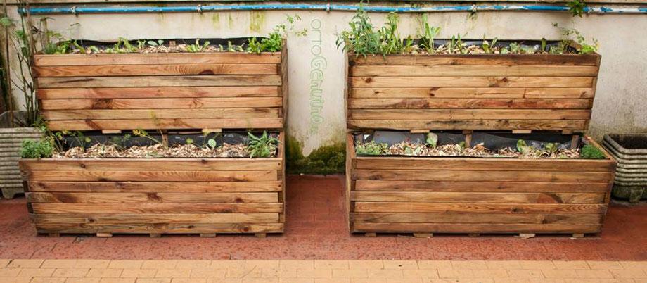 Come fare l'orto in cassetta sul terrazzo