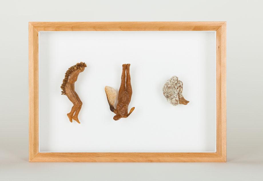 Wachs und pflanzliches Material, Objektkasten