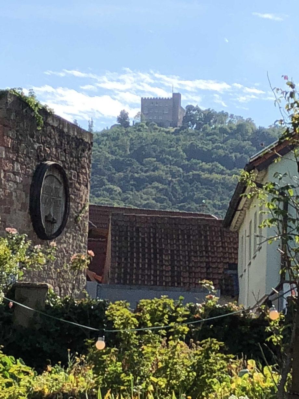 Blick von der Bühne auf das Hambacher Schloss am 29.7.18 im Theater in der Kurve