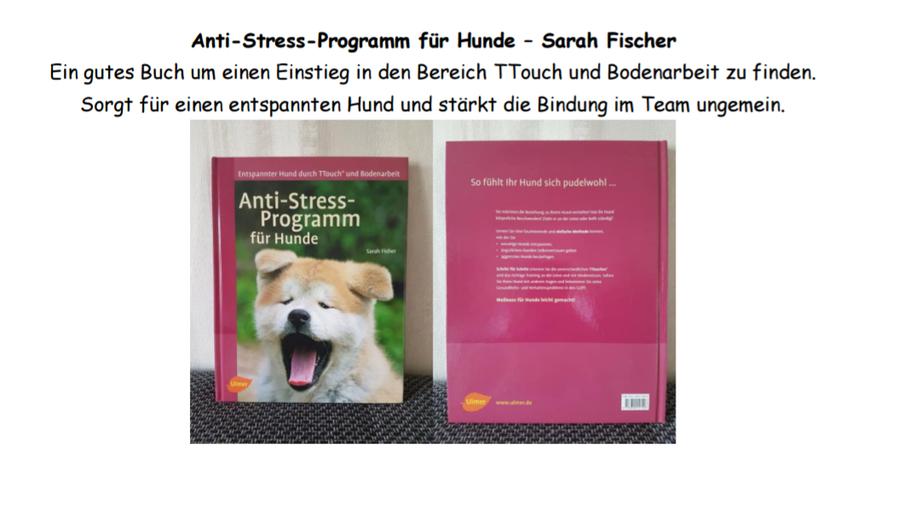 Anti-Stress-Programm für Hunde - Sarah Fischer
