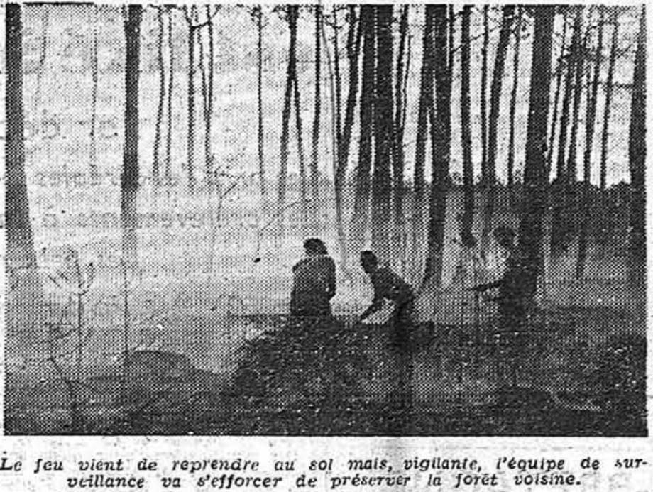 Entre 1943 et 1946, de nombreux incendies ravageaient les Landes de Gascogne.