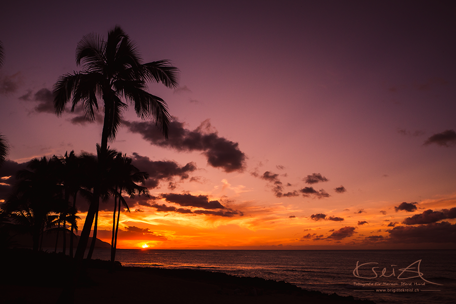 Sonnenuntergang |Hawaii