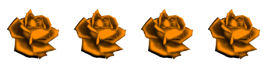 DEEZL yellow roses