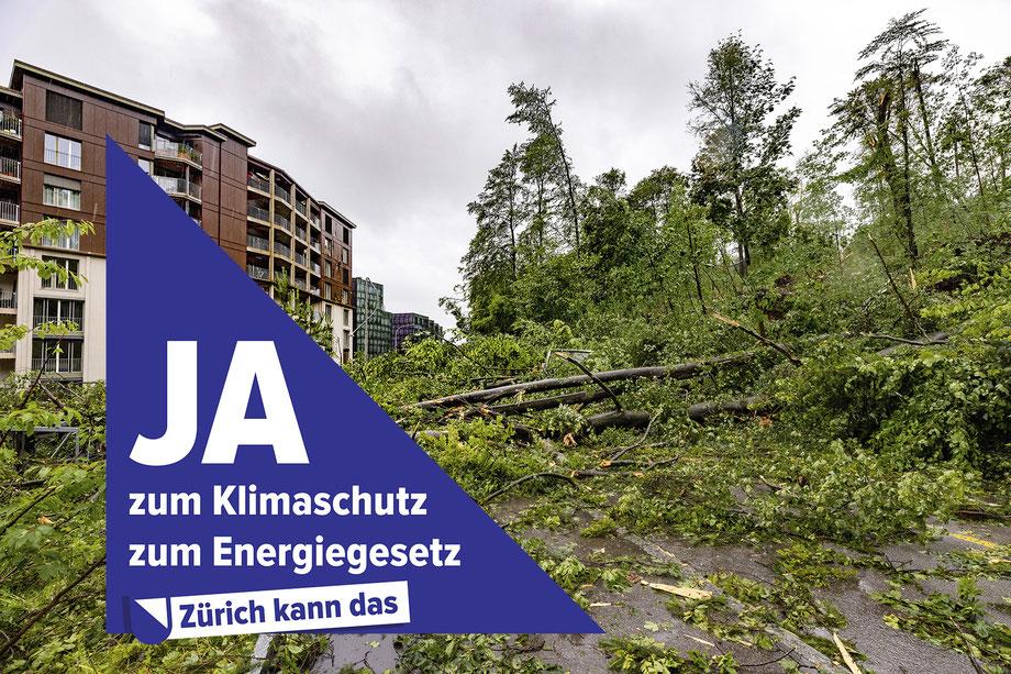 Käferberg nach dem Sturm Juli 2021, zvg