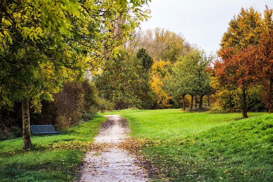 farben-des-herbst-natur-landschaft