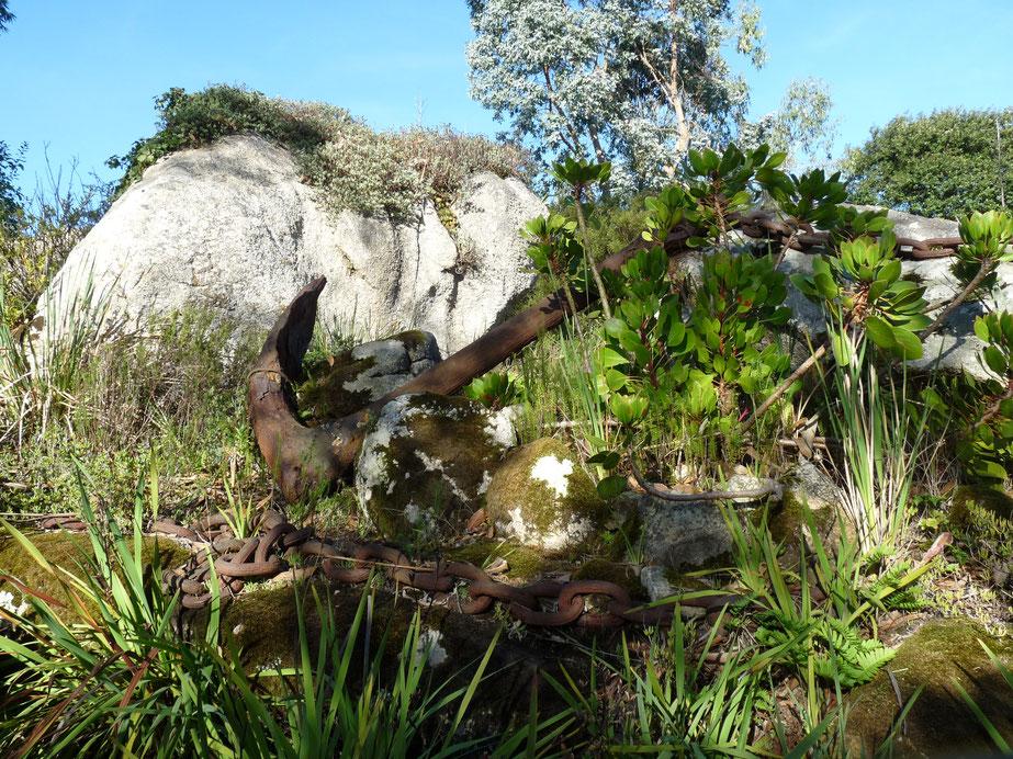 Jardin Botanique de Roscoff