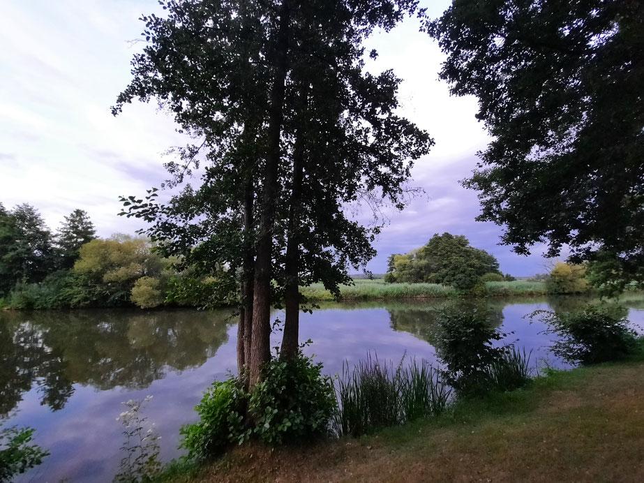 Die Regnitz direkt am Campingplatz in Bug