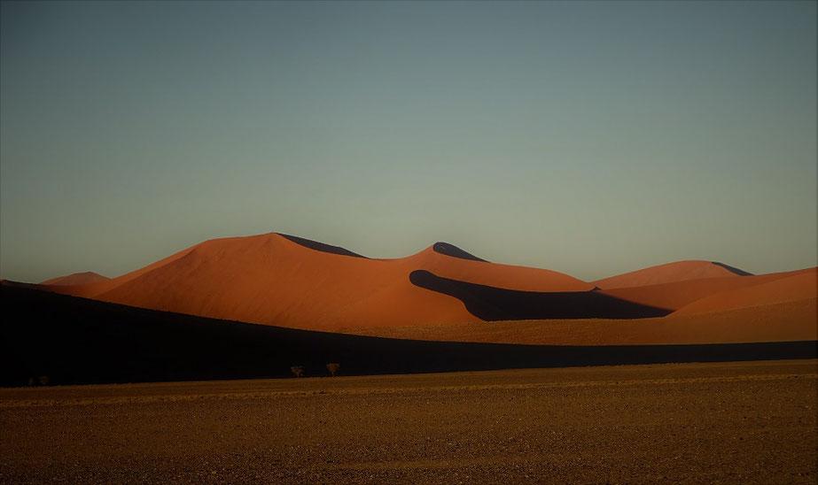 Dunes au lever du jour
