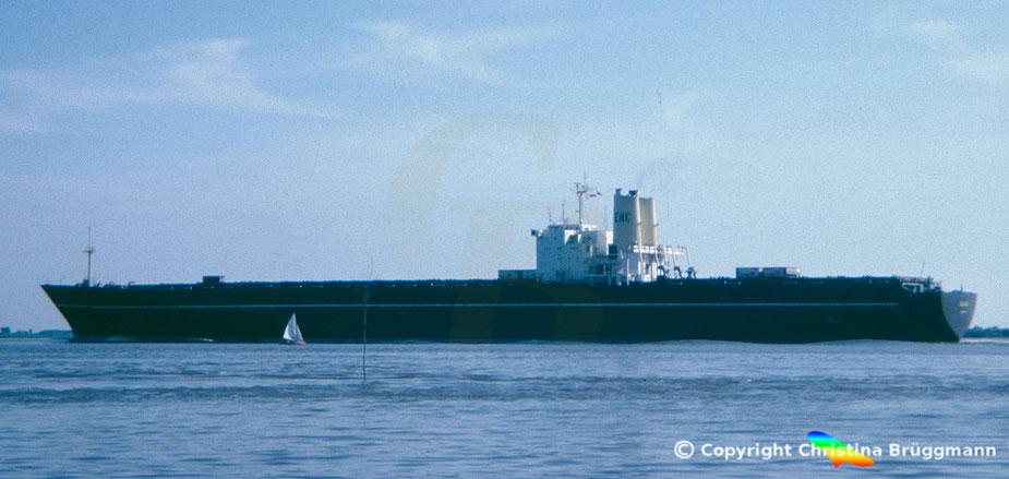 """Dänsiches 3. Generation Containerschiff """"JUTLANDIA"""" der EAC, 1983"""