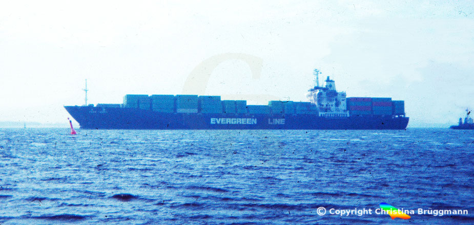 "Evergreen Containerschiff ""EVER LEVEL"" nach Kollision und Brand im Schlepp nach Hamburg 1983"