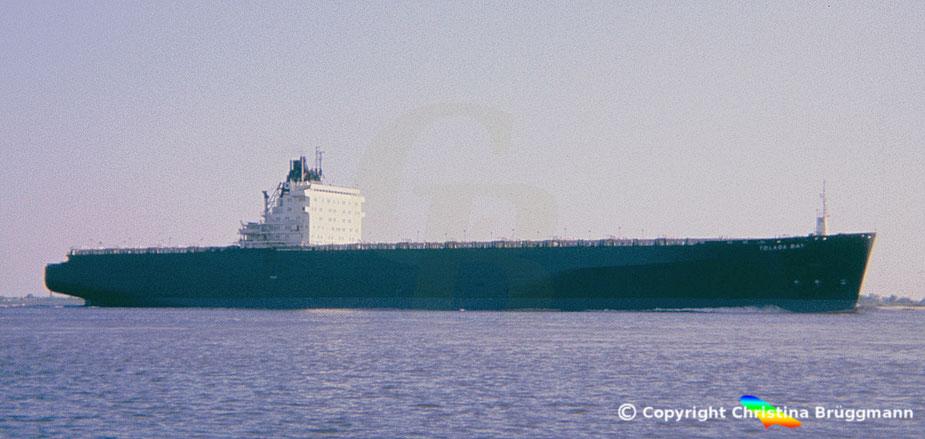 OCL Containerschiff der 3. Generation TOLAGA BAY auf der Elbe 1983