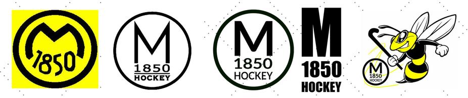 Die Logos der Hockeyabteilung von 1982 bis heute inkl dem Förderverein