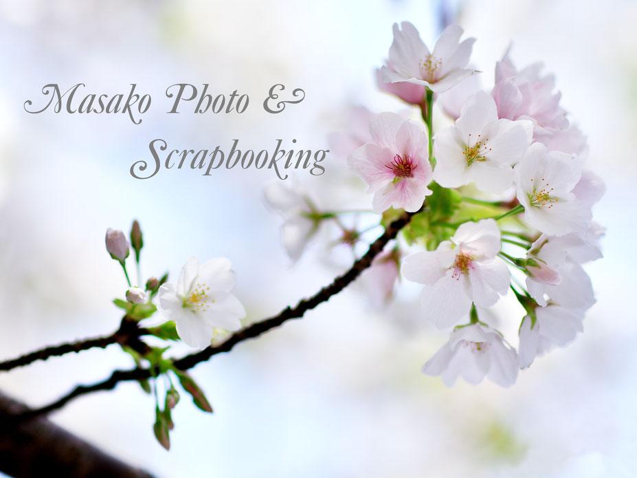 写真実習 photo by Masako