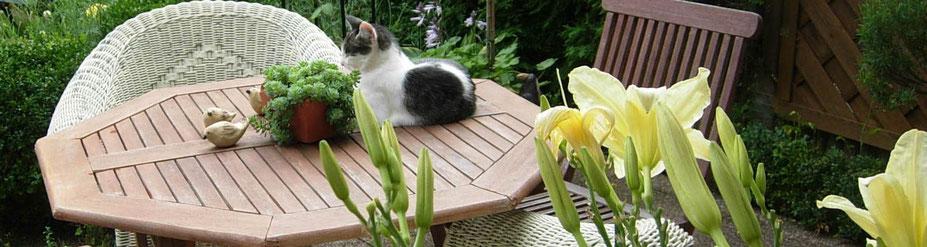 Gartensitzplatz mit Taglilien