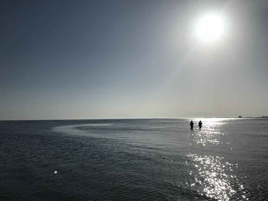 スタッフブログ 理学療法士の一年 写真6「輝く太陽」