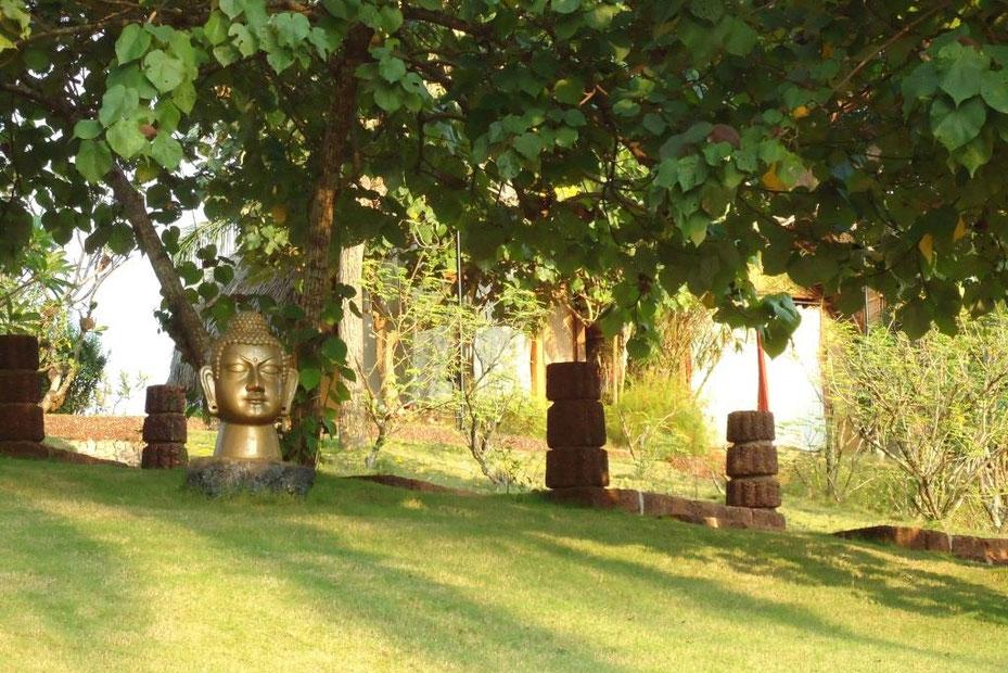 Garten im Devaaya Ayurveda Centre