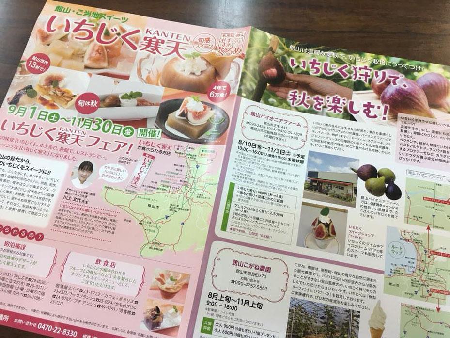 館山いちじく寒天フェアパンフレット