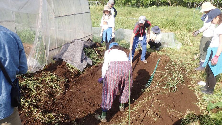ビオトープで農業体験@さとやま農学校・すどう農園