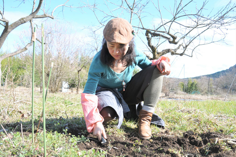 ハーブ教室、体験農園、メディカルハーブ講座神奈川