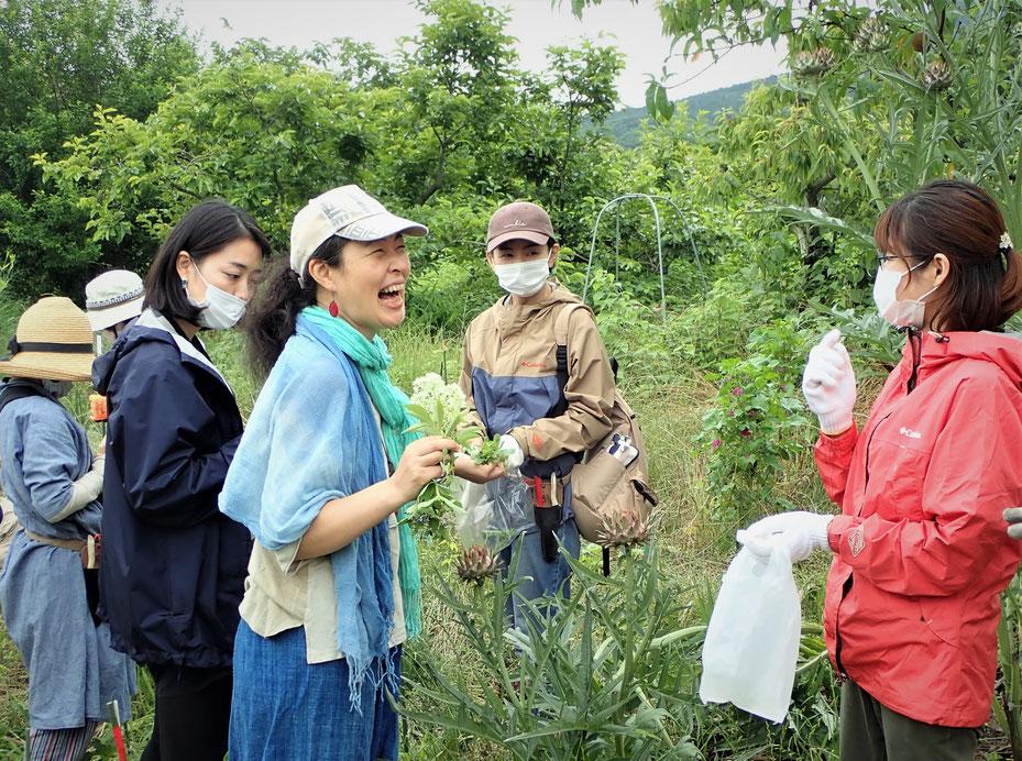 スワッグの作り方と自然栽培のハーブ講座