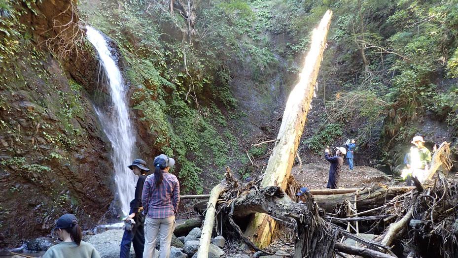 昨年2019の台風19号で大きく崩れた寒沢の滝