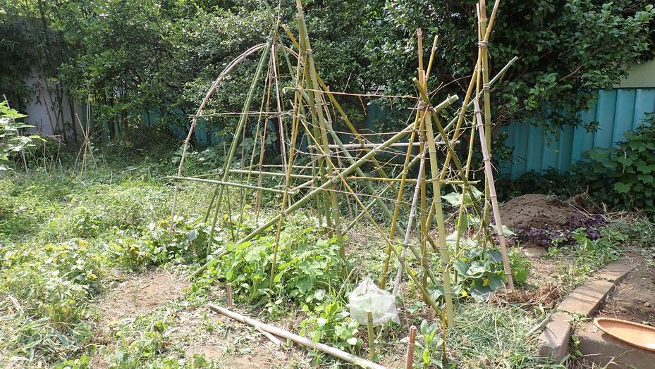 東京で自然農を学ぶ@世田谷ものづくり学校・すどう農園