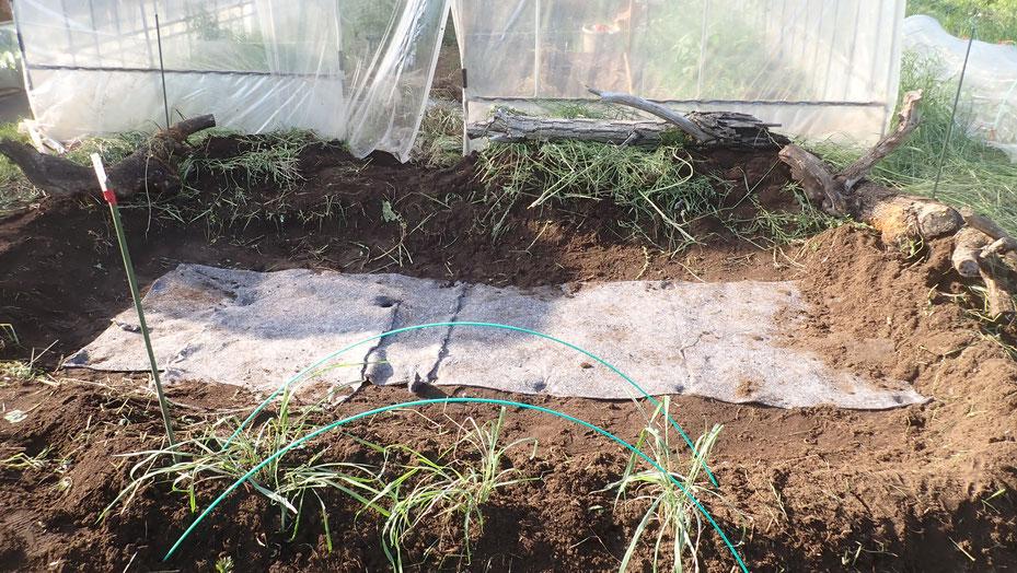 体験農園でビオトープづくり@さとやま農学校