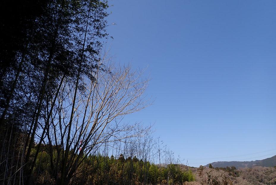 神奈川の里山で農業体験@さとやま農学校・すどう農園