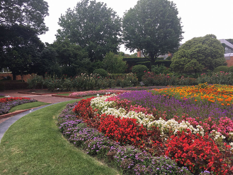 福岡市植物園の写真3