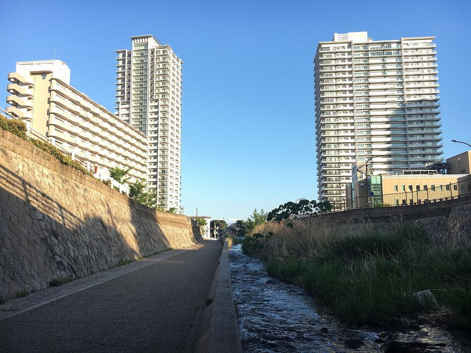 神戸市東灘区の住吉川