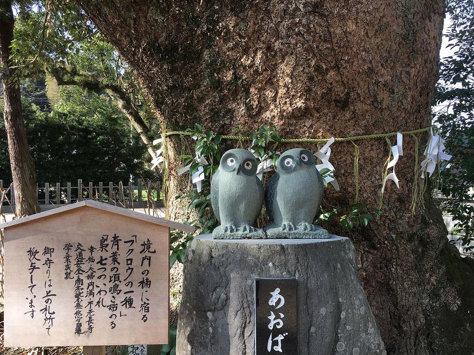 高倉神社の境内
