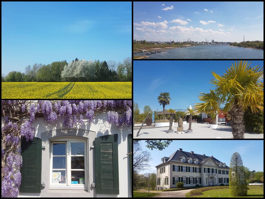 Kleine Collage zu Beginn, Rhein River Guesthouse, Schloss Laach, Beach Club Leverkusen und Leverkusen-Skyline- mit CANON EOS 77d