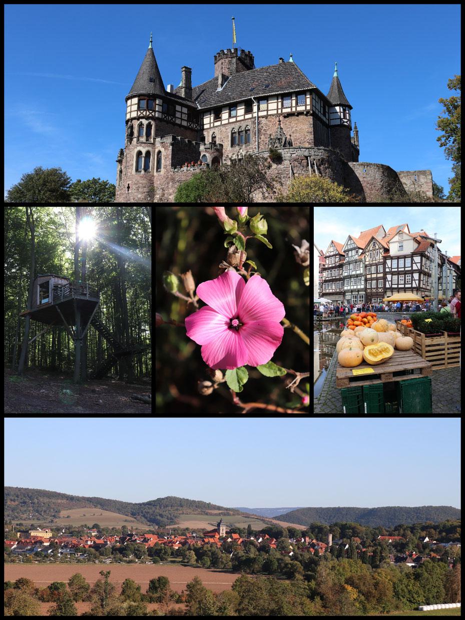 Herzlich Willkommen in der Grimmheimat Nordhessen an der Grenze zu NRW - Collage mit Canon EOS 77d