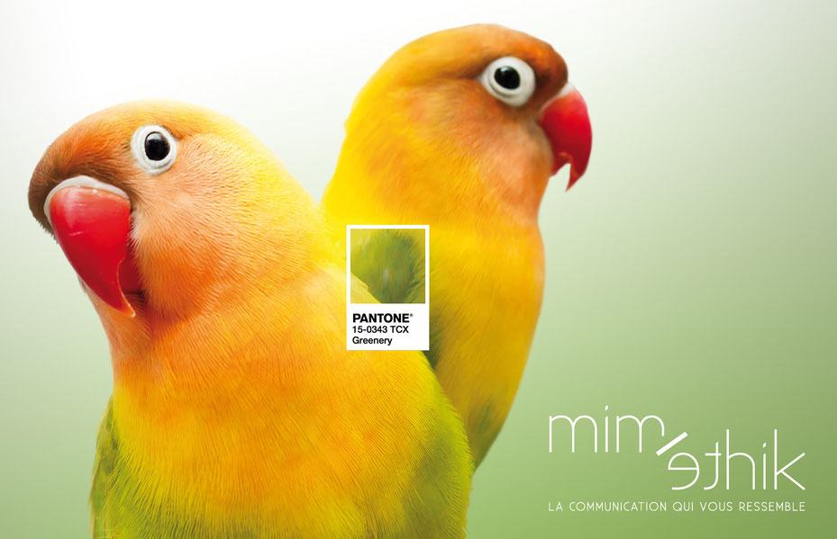 Pantone Greenery - logo miméthik