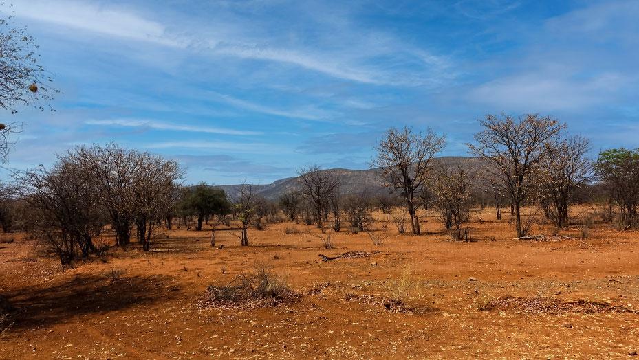 Paysage du Kaokoland, Namibie, photo non libre de droits