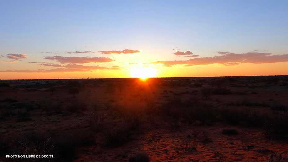 Soleil couchant dans le Kalahari, Namibie, photo non libre de droits