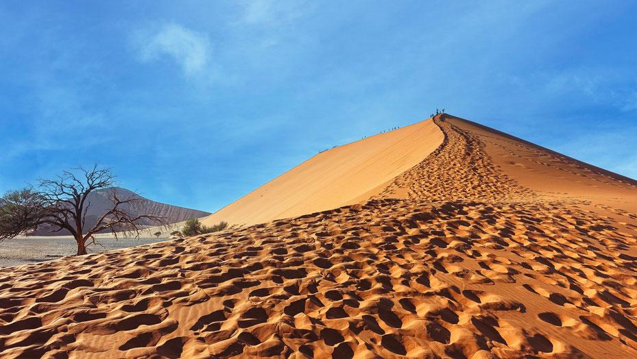 Les pas de l'humanité, Dune 45, photo non libre de droits