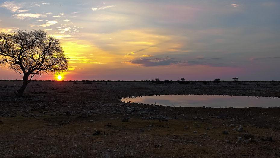 Coucher de soleil, Etosha, photo non libre de droits