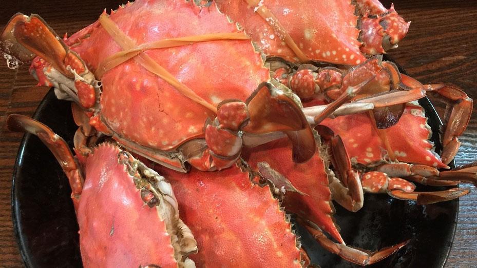 渡り蟹 , ワタリガニ