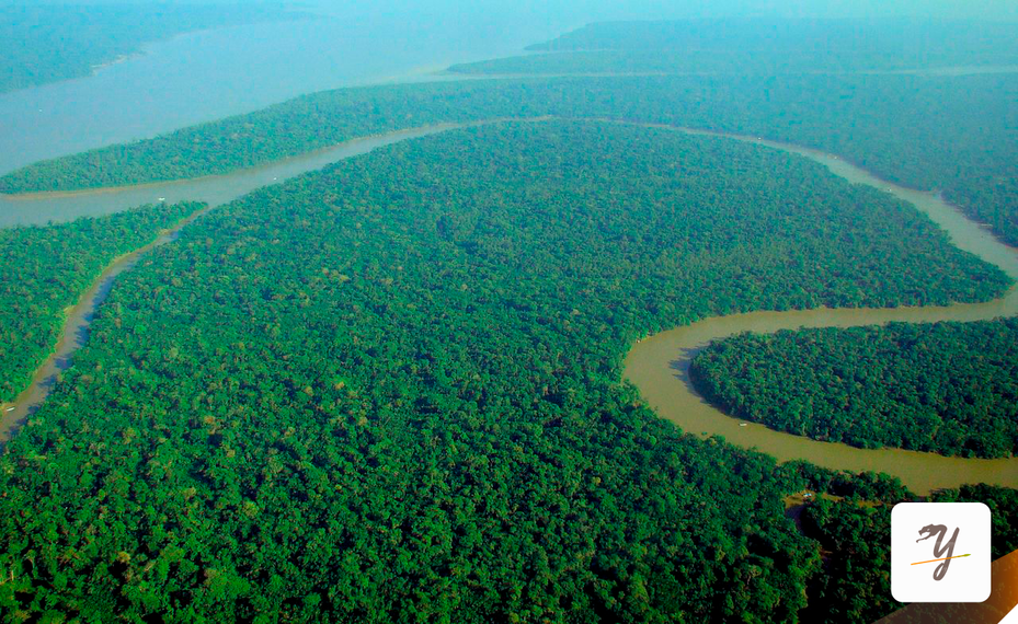 amazon river amazonas peru