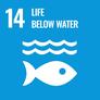 海の豊かさを守ろう(環境・目標14)