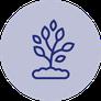 pflanzliche Inhaltsstoffe